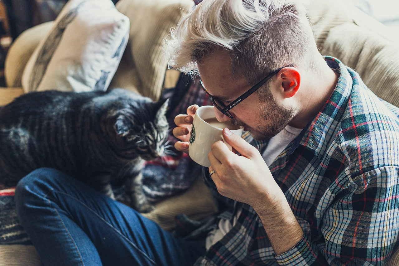 Человек, кошка, Диван, Кофе, Кружка, Пить, Пить Кофе