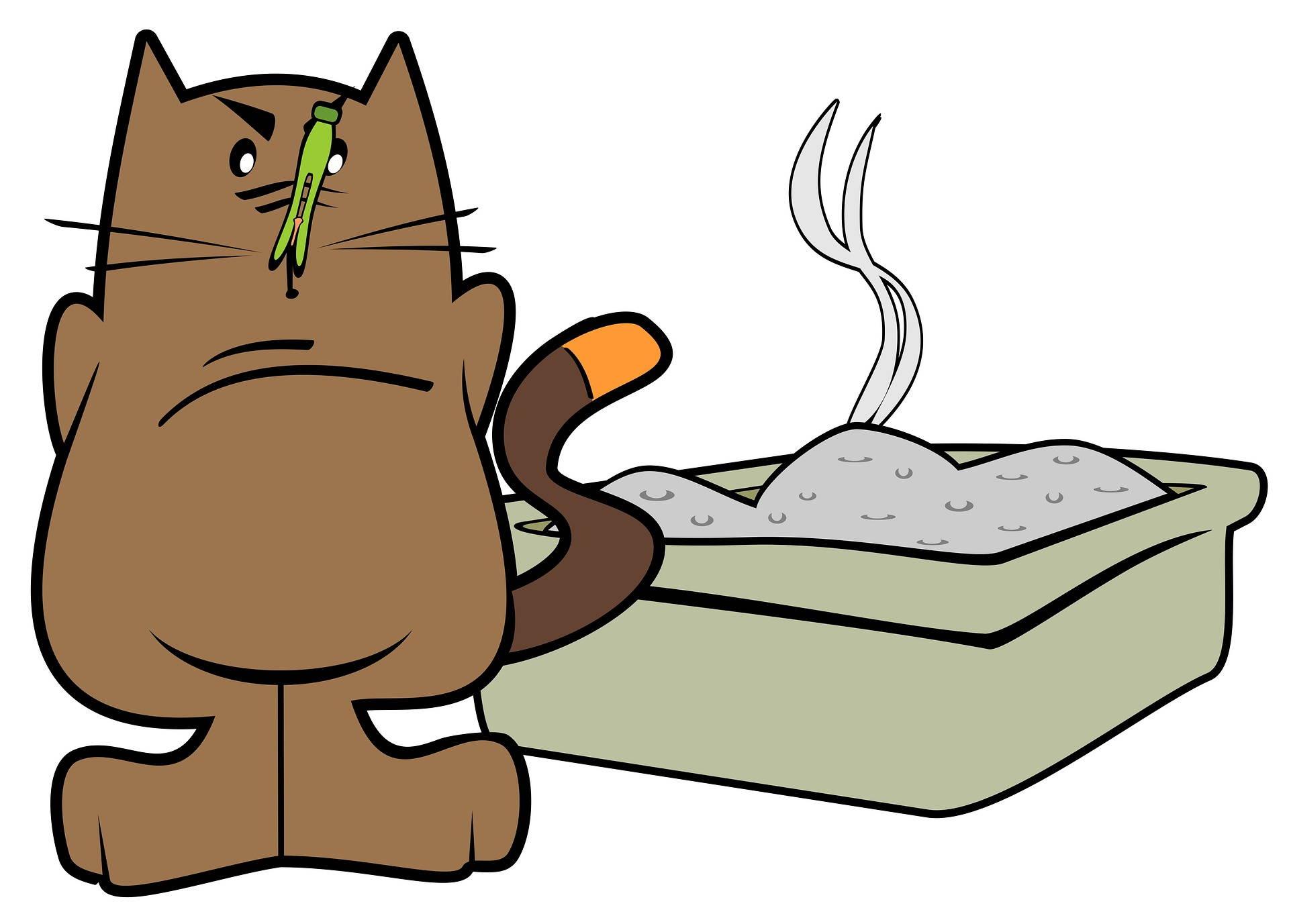 Домашние Животные, Грязный Туалет, кошка, лоток, наполнитель для кошек